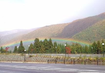 低い位置での虹1
