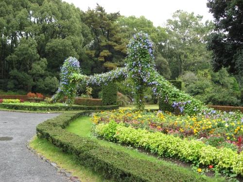 植物園内の昼顔のアーチ。