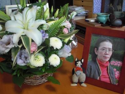 神田ぱんさんからお花をいただいきました