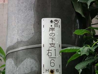 110529_08.jpg