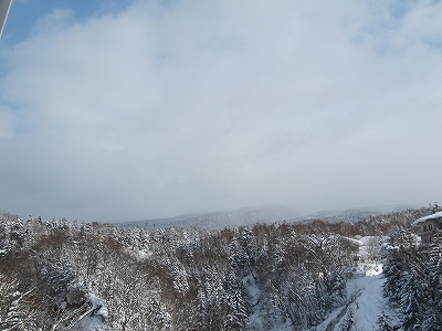 s-雪は降ってませ~ん