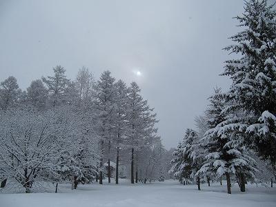 s-重い雪