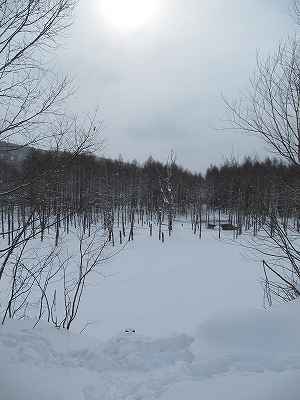 s-白い池
