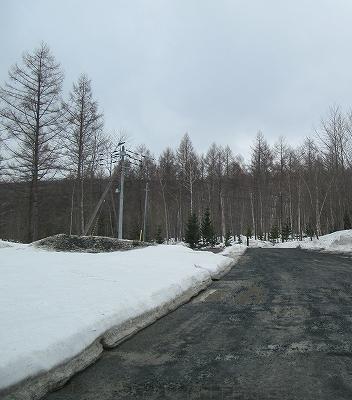 s-雪わり予定