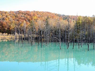 s-青い池10月27日