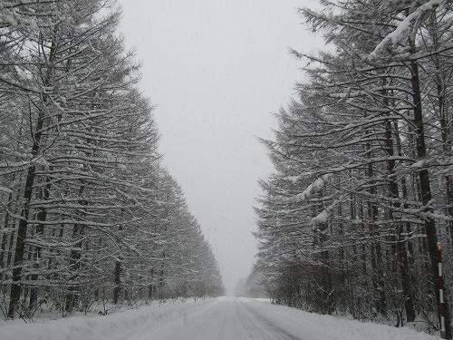 s-冬道。