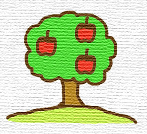 りんご 普通