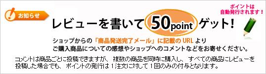 bn_point02.jpg
