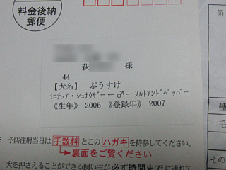CIMG4661.jpg