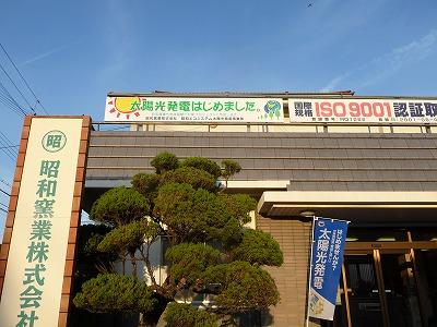 P1060965.jpg