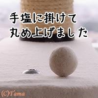20120117_4.jpg