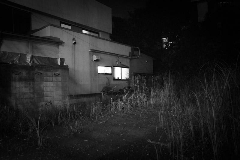 2_night_vision14.jpg