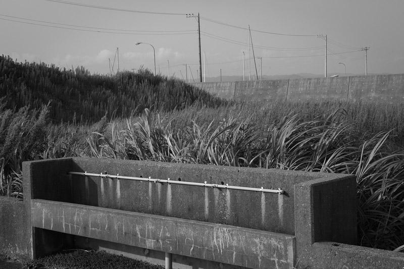 3_Solitude_Standing20100829.jpg