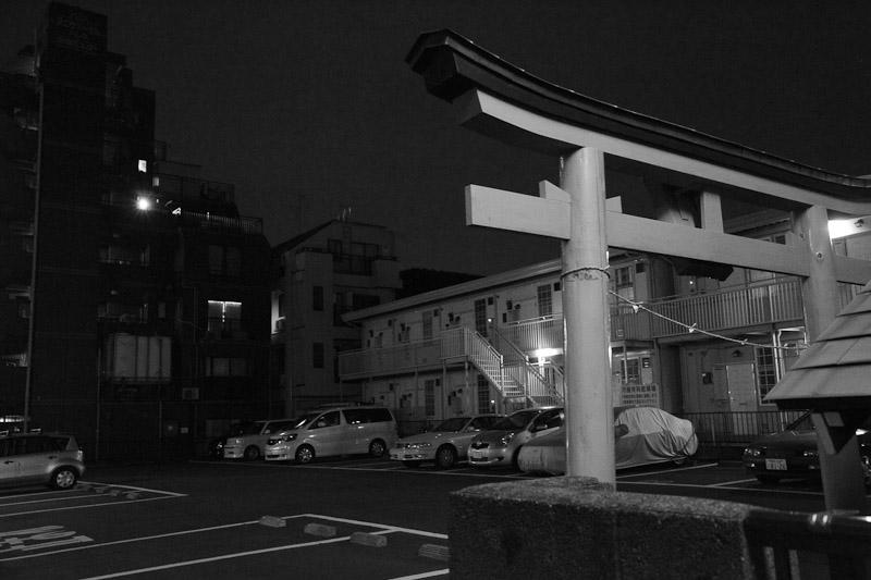 4_night_vision100807.jpg