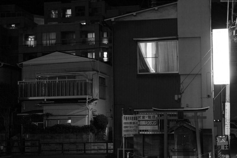 5_night_vision100807.jpg