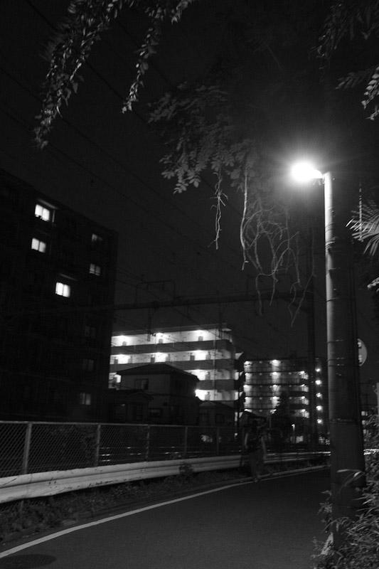 6_night_vision100807.jpg
