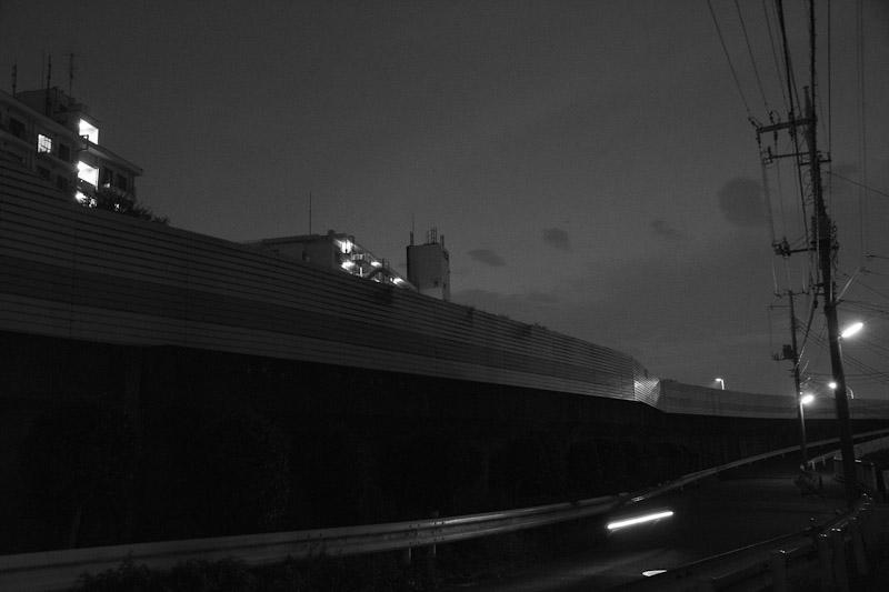 6_night_vision14.jpg