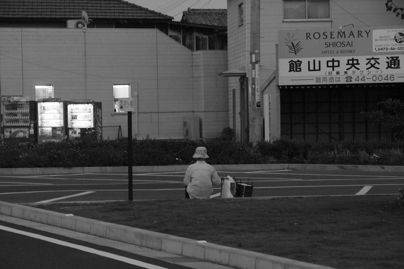 6_summer_evening20100904.jpg