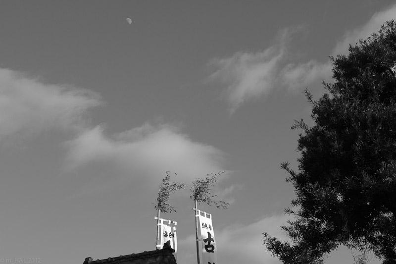 boso_2012-01-09-1.jpg