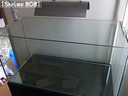 RIMG8819.jpg
