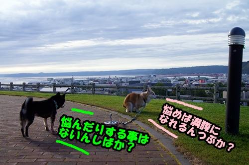 20140907-010.jpg