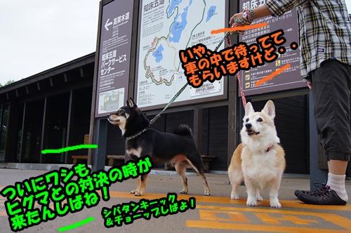 20140908-011.jpg