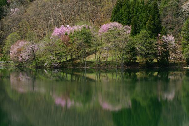 中綱湖ー1