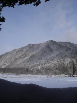 裏山(2012年3月19日)