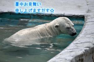 08.01愛ハス0.5