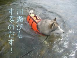 08.17お知らせ2