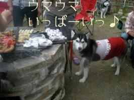 08.17お知らせ1
