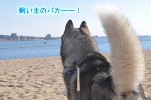 11.07愛ハス10