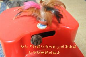 10.14お知らせ2
