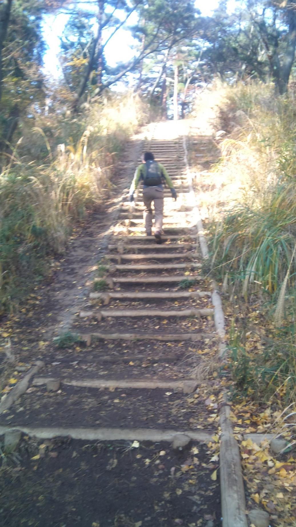 長い階段や