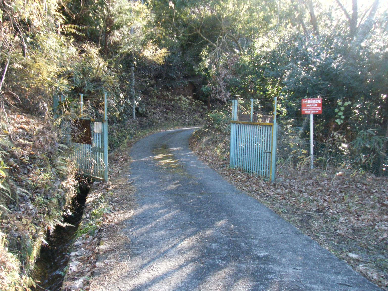 6登山道入り口