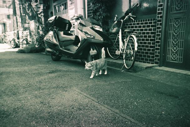 shio_東京散歩2