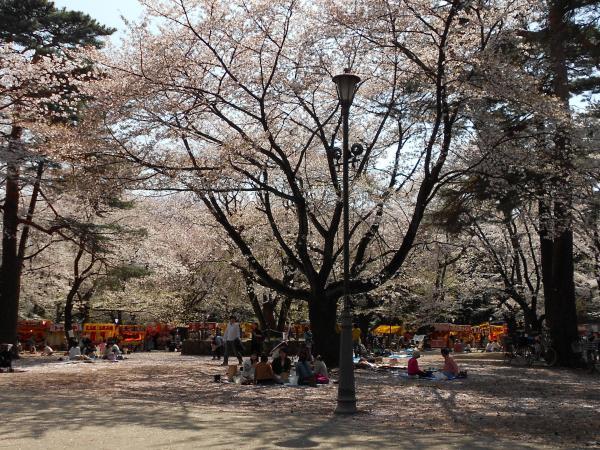 大宮公園(5)_convert_20120415211045