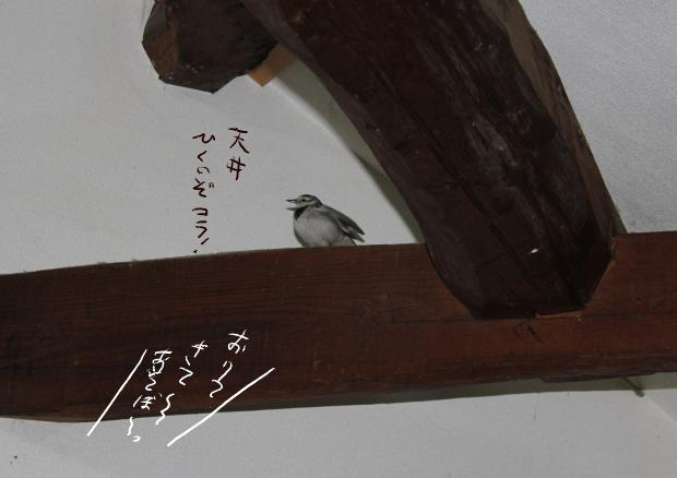 02_20110305100824.jpg