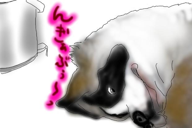04_20110127003007.jpg