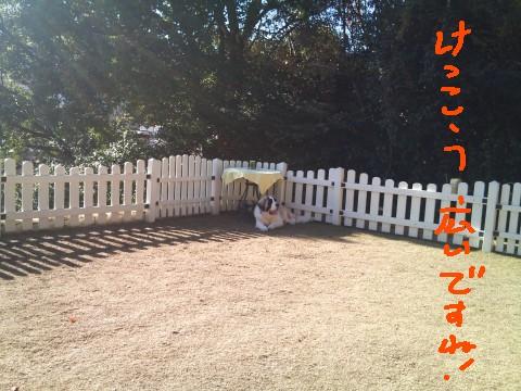 2010-12-12 10.24.59