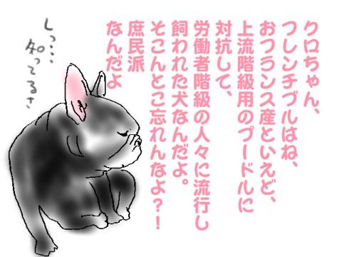 3_20101216223041.jpg