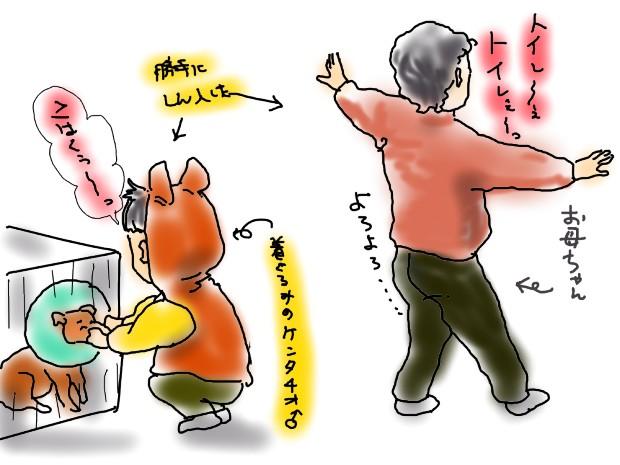 kohaku_20110212222544.jpg