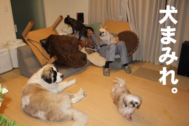 shuugou_20110208071907.jpg