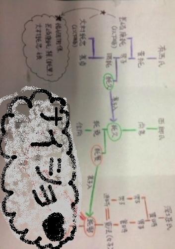 系図・深堀1