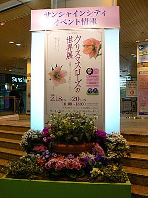 20110218a