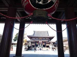 kawasakiDSC_0395.jpg