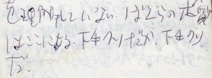 19960504sita(300)430.jpg