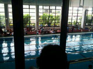 ジュニア夏季水泳競技大会 1