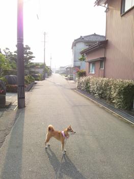 道路201201