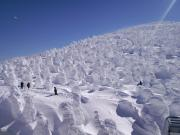 2011 蔵王樹氷 4